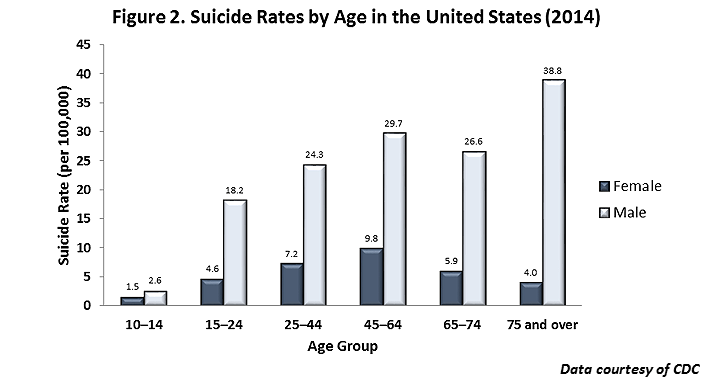 figure 2 suicide rates by age in the united states 2014