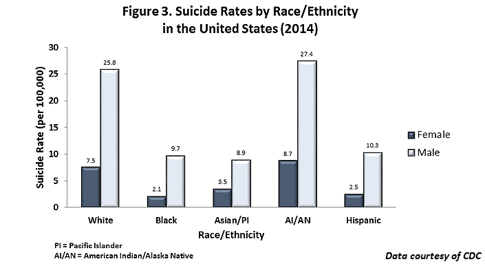 figure 3 suicide rates by race ethnicity in the united states 2014